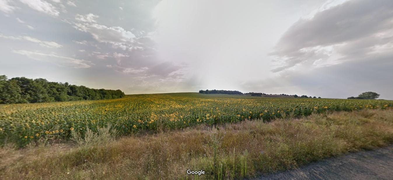 земеделска земя белослав